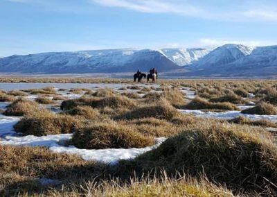skordugil-riding10