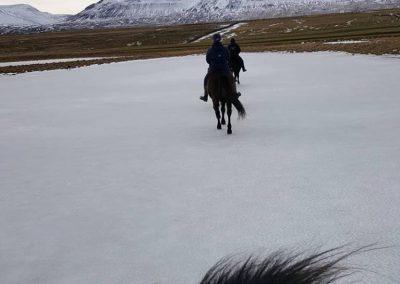 skordugil-riding11