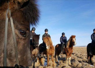 skordugil-riding22